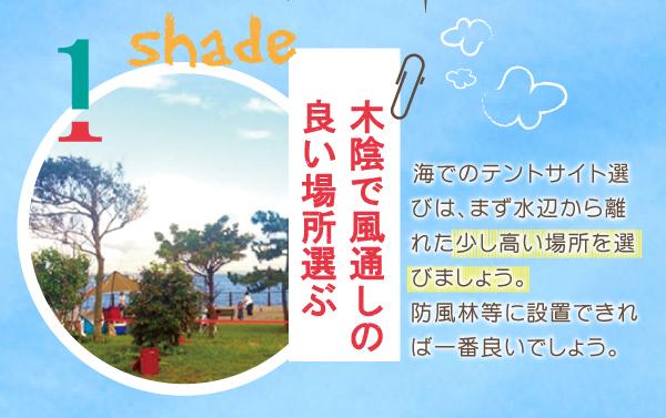 木陰で風通しの良い場所を選ぶ