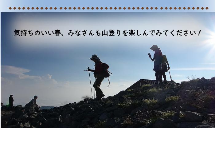 気持ちのいい春山登りを楽しんでください
