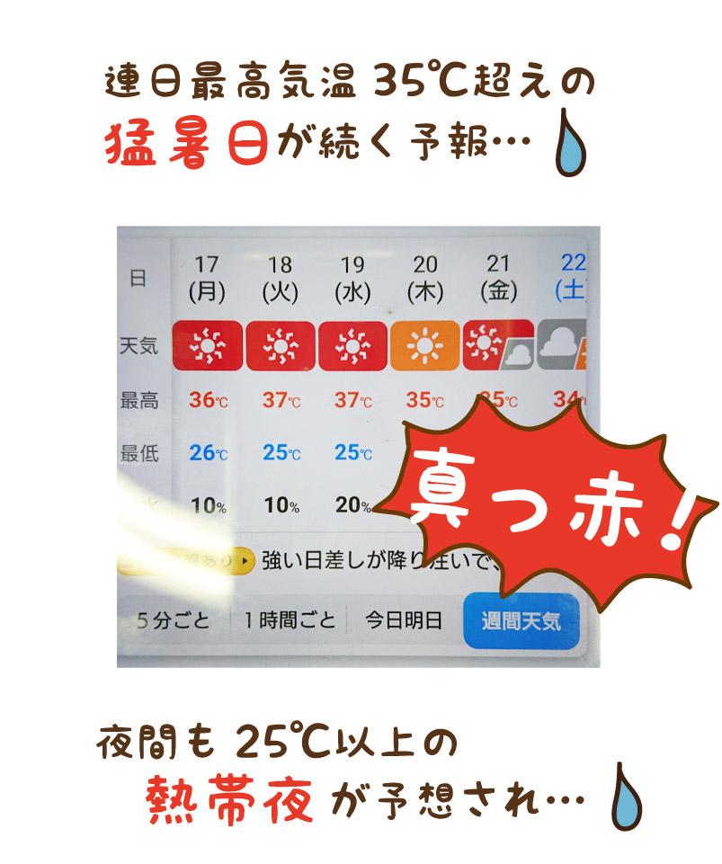 猛暑日が続く予報
