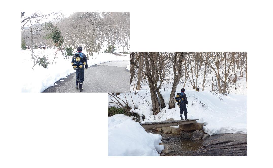 除雪された通路の写真と高く雪が積もった通路わきを写した写真